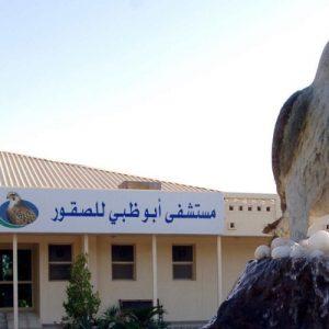 falcon statue at abu dhabi falcon hotel entrance