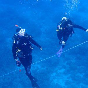 divers exploring kerama waters
