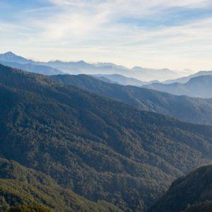 Discover Alishan Mountain