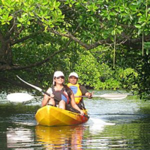 Mangrove Kayaking Experience in Havelock Island from Andaman Islands