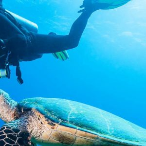 Diving in Mauritius near Trou aux Biches