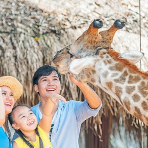 Vinpearl Safari Phu Quoc Ticket