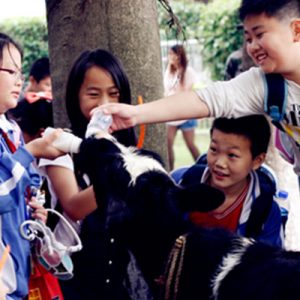 admission to guangming