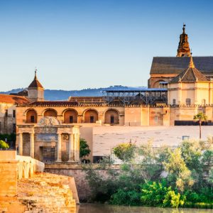 Guided Full Day Tour in Cordoba