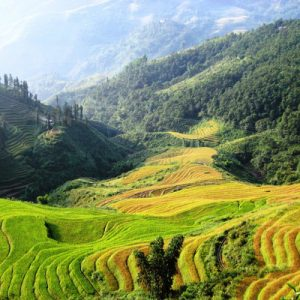 2D1N Sa Pa Tour by Bus from Hanoi (Homestay Accommodations)