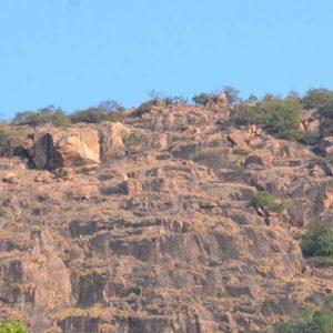peak of Makalidurga