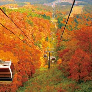cable cars mount jeans nasu autumn leaves sightseeing day trip from tokyo, nasu mountains from tokyo, autumn leaves in nasu, megumi mekke lunch buffet, gensen nasuzan hot springs, cheese garden nasu cheese cakes
