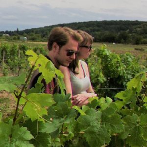 tourists being toured in a Vouvray vineyard