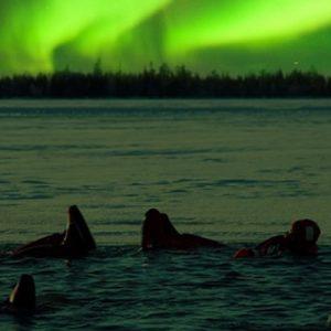 northern lights experience lapland, aurora borealis lapland