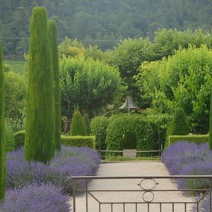 a botanical garden somewhere in the Luberon Valley in Provence