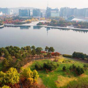 autumn foliage seoul tour