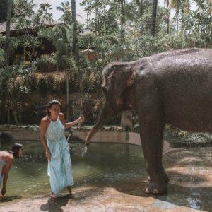 Lombok Elephant Park Ticket