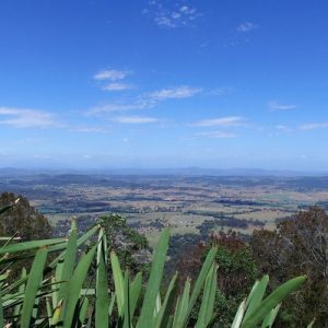 view of a vast landscape from mount tamborine