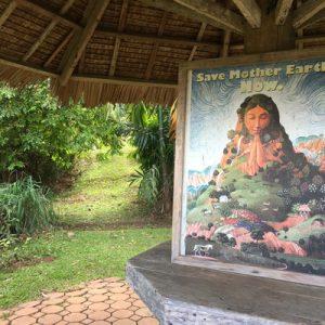eden nature park's portrait of the virgin