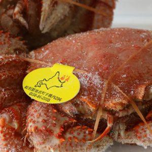 Klook Exclusive: Hokkaido Horsehair Crab Souvenir (New Chitose Airport/JR Chitose Station Pick Up) in Hokkaido, Japan