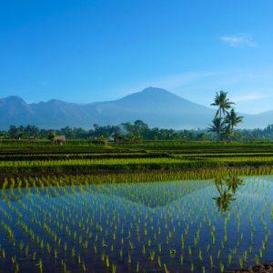 Lombok Rinjani Volcano View