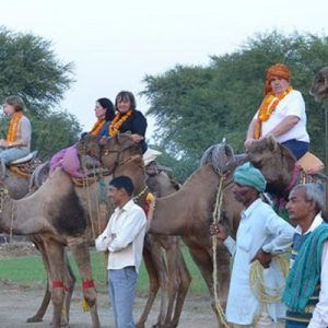 Abhaneri Private Day Trip from Jaipur
