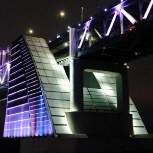 busan night yacht tour