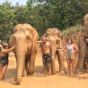 Elephant Park Chiang Mai Experience