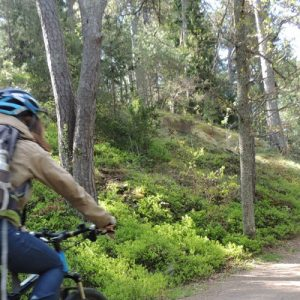woman riding bike in stockholm forest