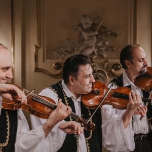 musicians playing violin in danube palace folklore show