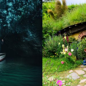 waitomo glowworm caves and hobbiton