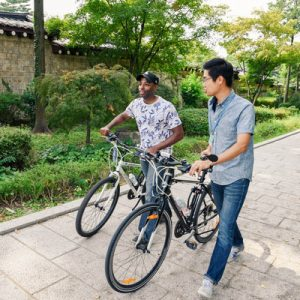 ultimate seoul bike tour