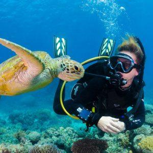 person scuba diving with turtle in shiroda beach goa