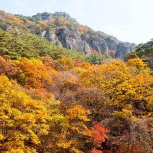 juwangsan mountain in autumn foliage