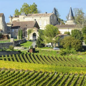 private wine day tour from bordeaux