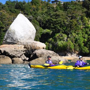 kayaking tours at nelson new zealand