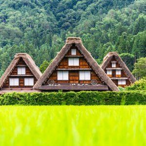 farmhouses at shirakawa-go