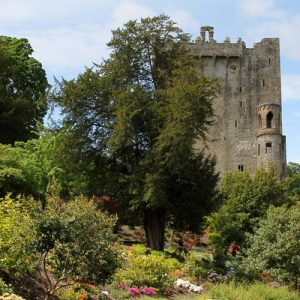 gardens of the blarney castle
