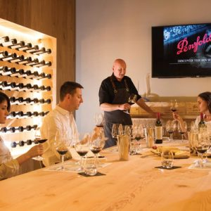 magill penfolds experience