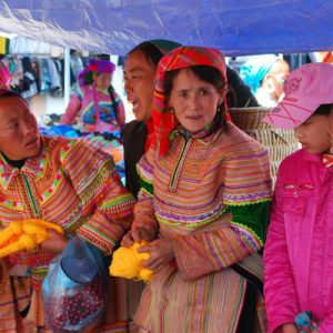 3D2N Sapa Trekking and Bac Ha Market Tour from Hanoi