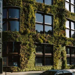 exteriors of the Musée du quai Branly – Jacques Chirac; the windows are surrounded by greens