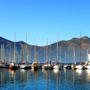 cape peninsula half day tour from cape town