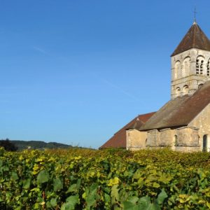 champagne region day tour, reims day tour, marne valley day tour, champagne region tour with wine tasting, veuve clicquot visit in reims, marne valley vineyards visit, champagne day tour with champagne tasting and lunch