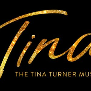tina turner banner show