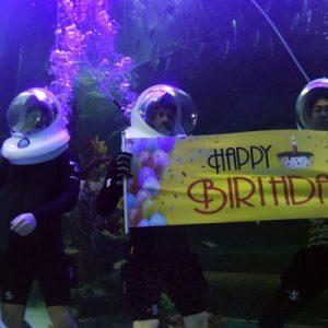 a birthday greeting while seawalking Woongjin Aquarium Ticket with Seawalker Experience