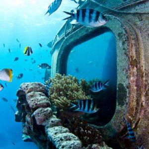 underwater observatory fish eye marine park