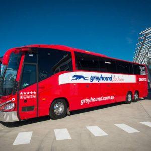 greyhound bus for cairns airlie beach townsville