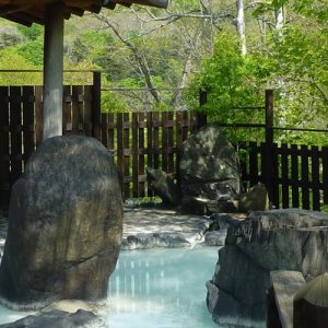 onsen with wooden fence rocks and trees