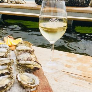 oysters farm tours from port lincoln