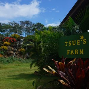 entrance at tsue's farm