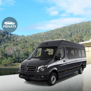 black mercedes benz van against background of trees and mountains