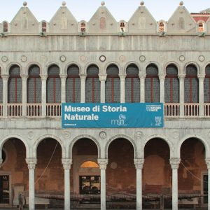 Natural History Museum in venice