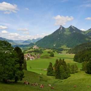 mountains and green fields in gruyeres