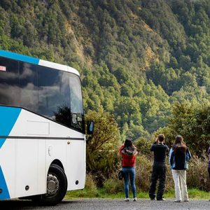 Milford Sound Day Tour from Queenstown/Te Anau