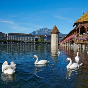 lucerne city tour with cruise, lucerne tour from zurich, saphir yacht cruise at lake lucerne